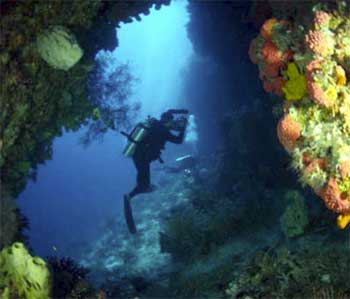 Discovery Yachts Diving