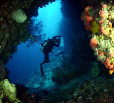 Indonesia Cave Diving