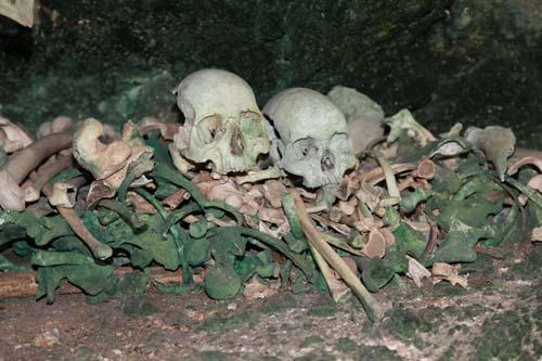 Tongan Bone Pile Color