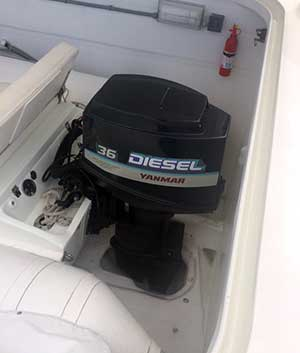 Expedition Catamaran Outboard Flush Well